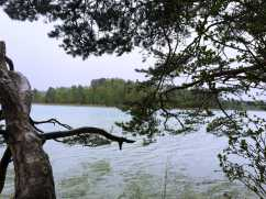 Ostersee2