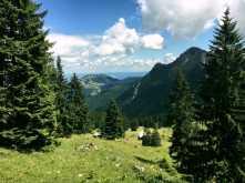 Schweinsberg_023