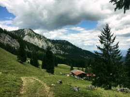 Schweinsberg_028