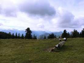 016_Gipfelblick_Hochalm_SchergenwieserBerg