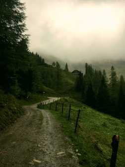 025_Way_to_TraunerAlm