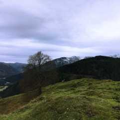 010_Bergwelt_Seebergkopf