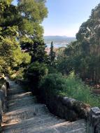 103_Viana_do_Castelo_Stairs_down