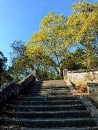 104_Viana_do_Castelo_Stairs_up