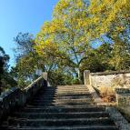 104_Viana_do_Castelo_Stairs_up