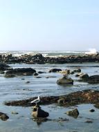 118_Atlantik_Costa_Verde