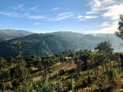 158_Douro_Valley