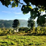 163_Douro_Valley