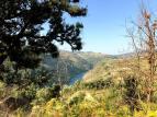 167_Douro_Valley