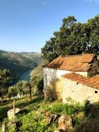 169_Douro_Valley